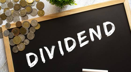Why Investors Should Consider Quality Dividend Stocks